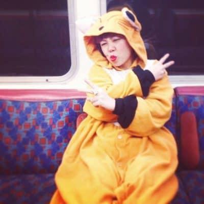 Fox in train