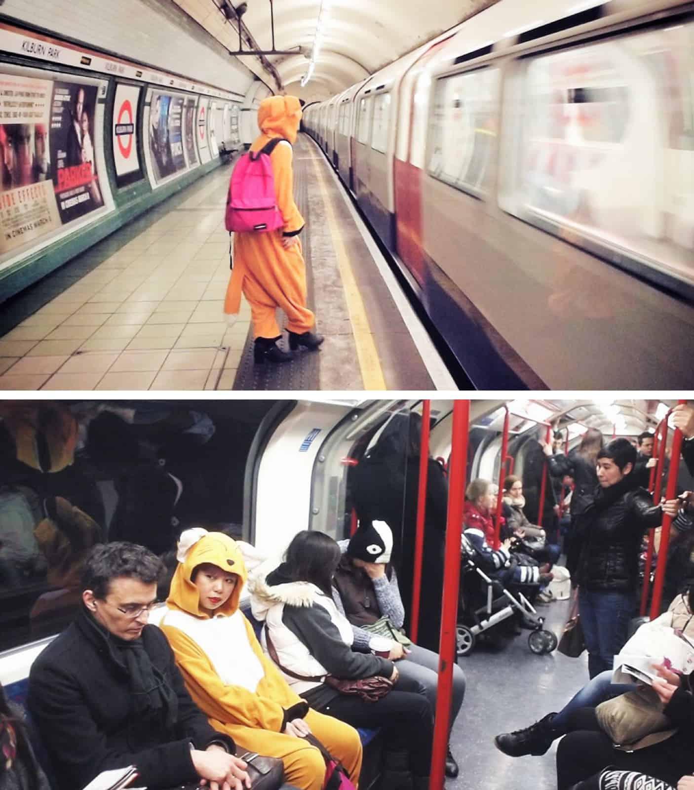 Fox on the tube