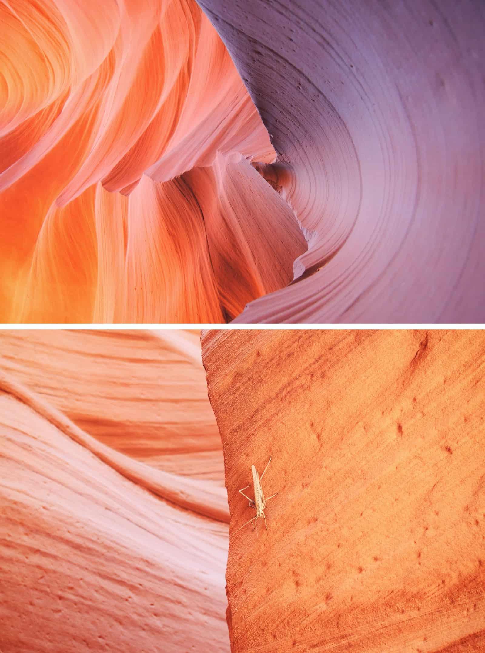 canyon closeups