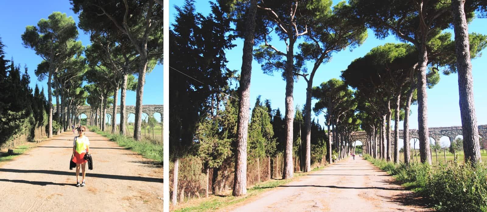 aqueducts pines