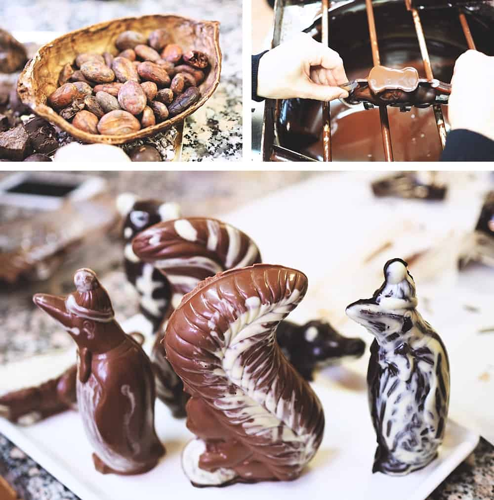 swiss chocolate workshop