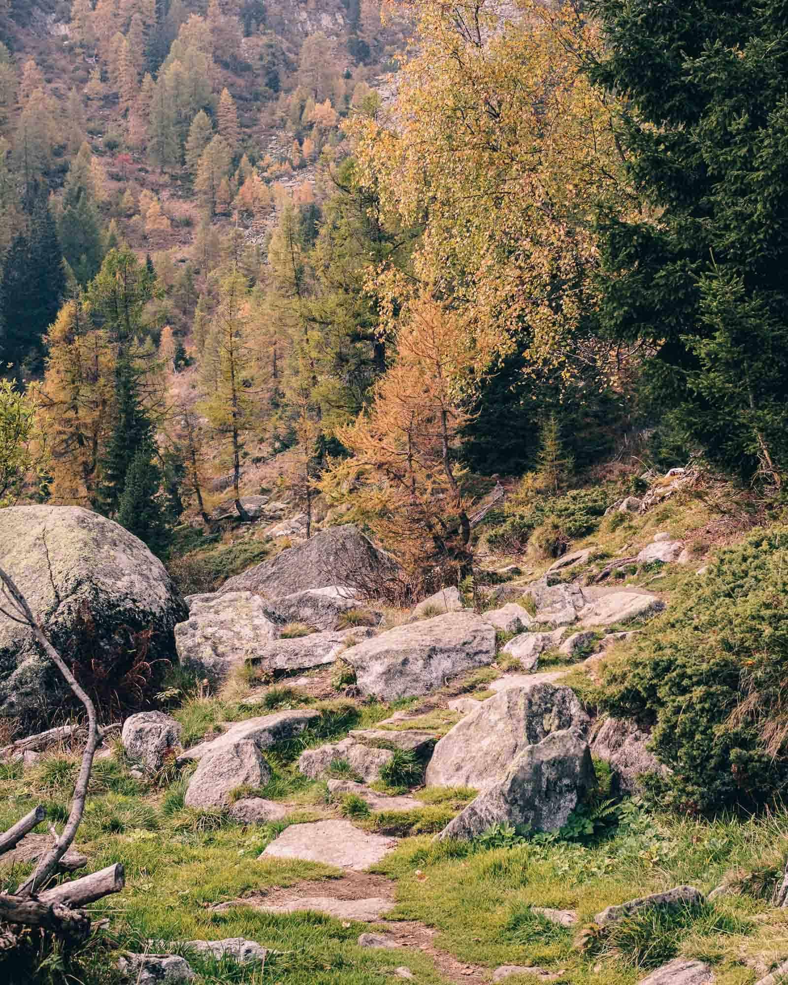 visit trentino hiking